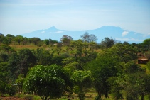 The view from a nearby hillside. That's Kilimanjaro.